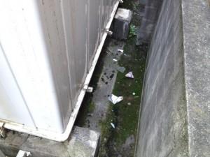 日常清掃 名古屋市南区